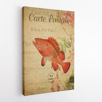 Fish Vintage Postcard