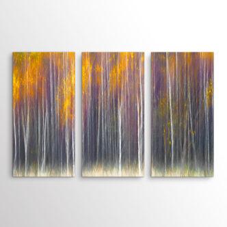 Abstract Το Φύλλωμα του Δάσους, Τρίπτυχος